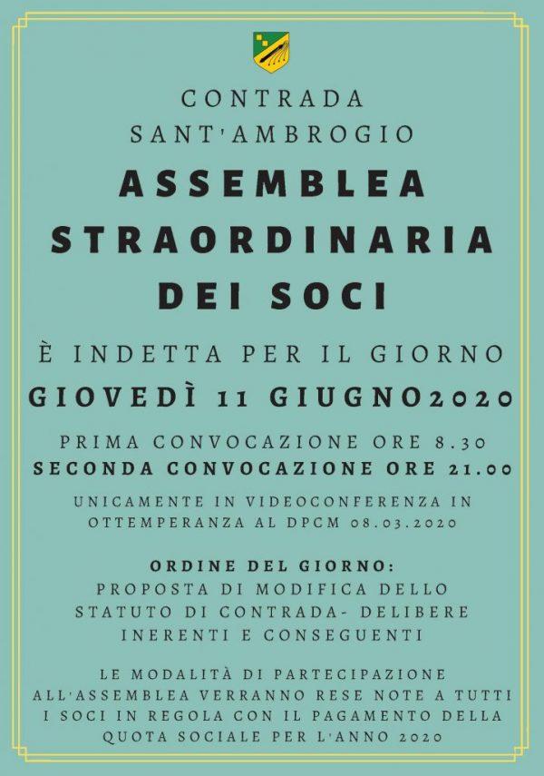 assemblea_straordinaria